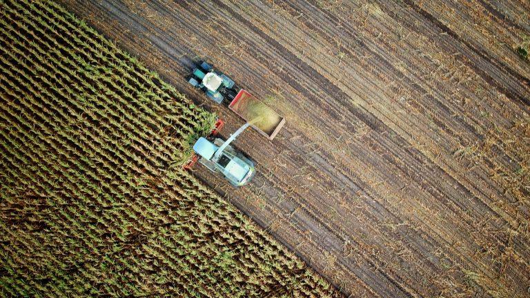 Agricultura del futuro